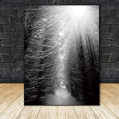 Find Your Fairytale In The Wood | Foggy Winter Forest Canvas print - Wall Art 60X90cm