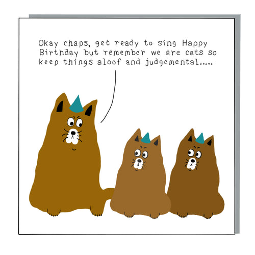 Aloof Cats Card