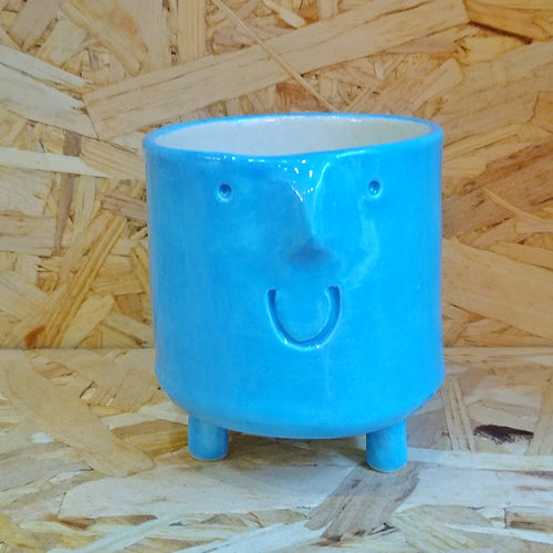 Small Funny Face Plant Pot Blue