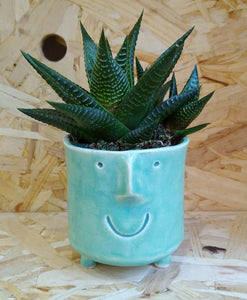 Small Funny Face Plant Pot Mint