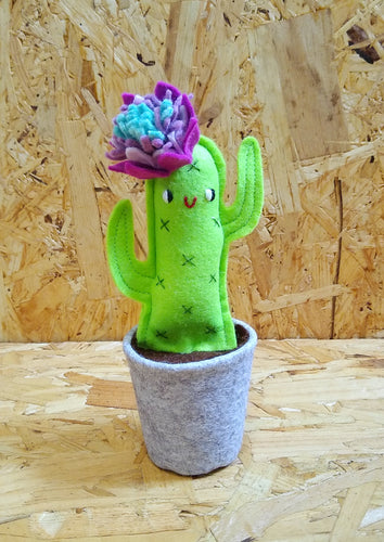 Mini Cactus with Face No.5