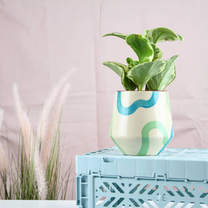 Pistachio and Turquoise Angular Planter