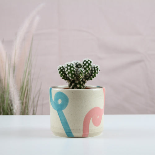 Coral and Turquoise Loop Planter