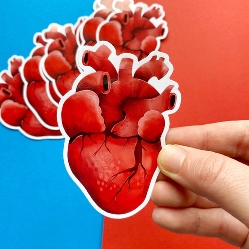 Human Heart Vinyl Sticker