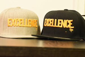 EXCELLENCE. - SnapBack