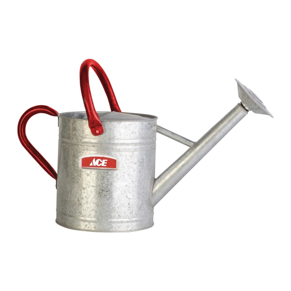 Ace 2 gal. Steel Gray Watering Can