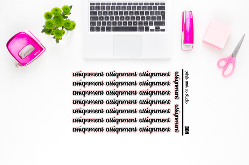 assignment script planner stickers (S304)