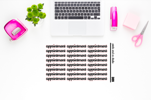 appointment script planner stickers (S309)