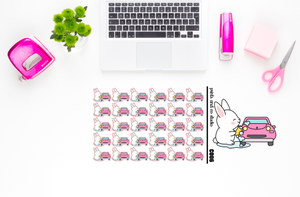 Carrots washes the car planner stickers (C006)