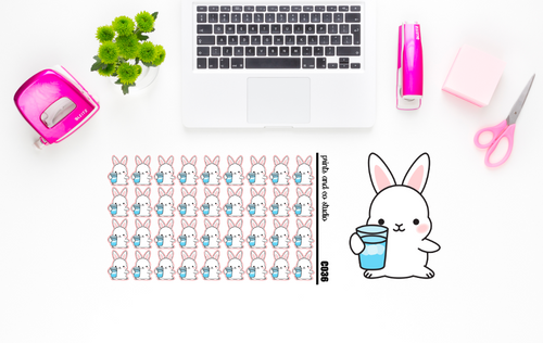 Carrots drinks water planner stickers (C036)