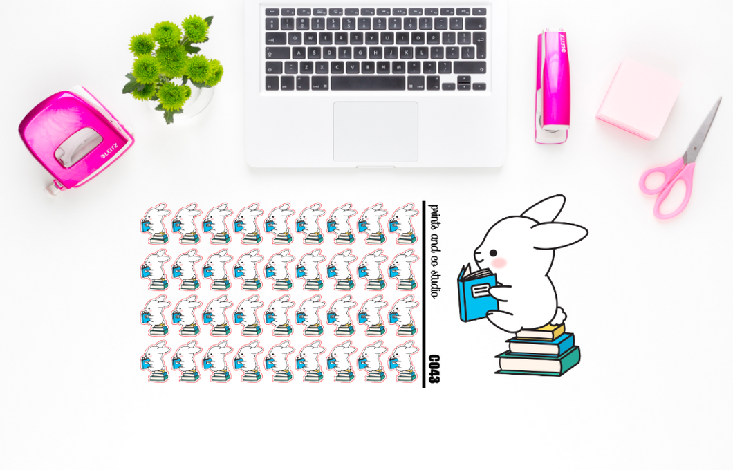 Carrots loves books planner stickers (C043)