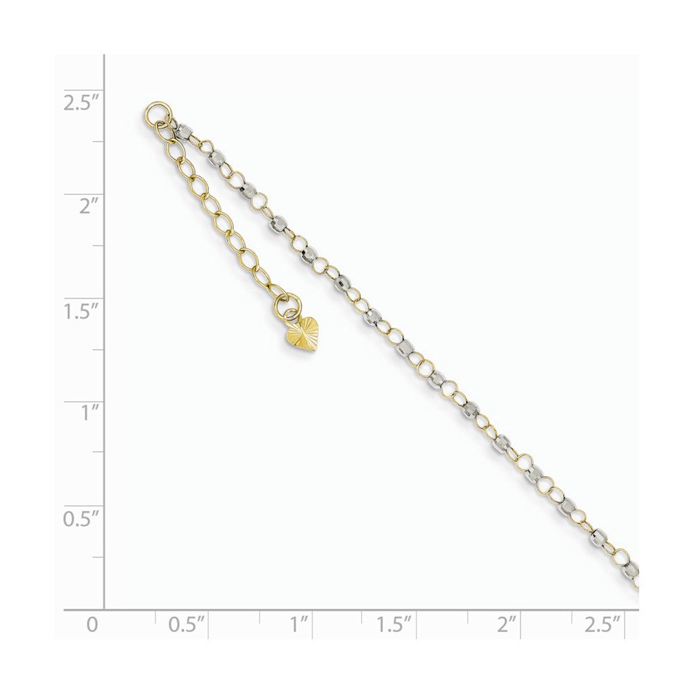 Alternate view of the 14k Two-Tone Gold Circle and Bead Chain Adjustable Anklet, 9 Inch by The Black Bow Jewelry Co.