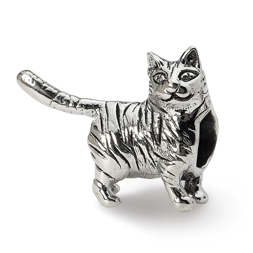Sterling Silver American Shorthair Cat Bead Charm, Item B10572 by The Black Bow Jewelry Co.