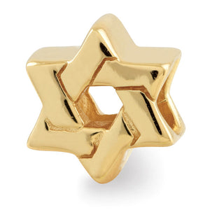 Star of David Charm in 14k Yellow Gold Plated Sterling Silver - The Black Bow Jewelry Co.
