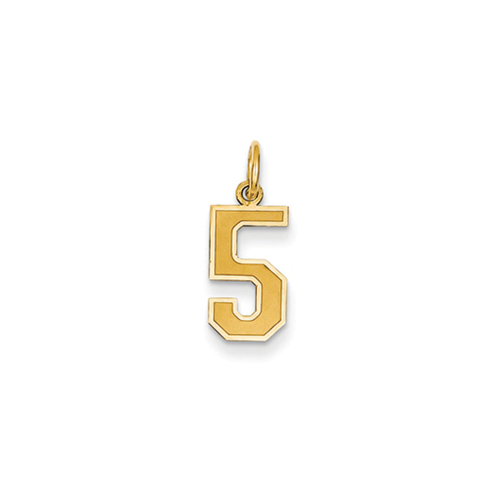 14k Yellow Gold, Jersey Collection, Small Number 5 Pendant, Item P10400-5 by The Black Bow Jewelry Co.