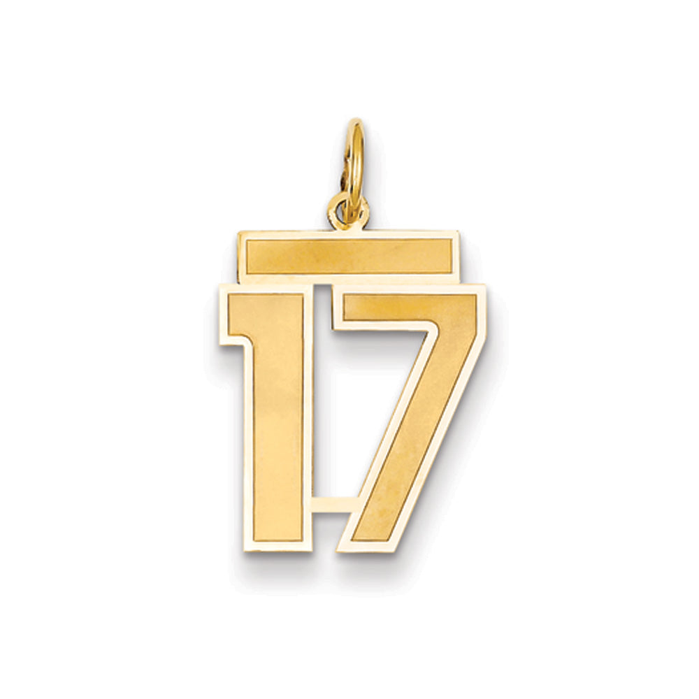 14k Yellow Gold, Jersey Collection, Medium Number 17 Pendant, Item P10402-17 by The Black Bow Jewelry Co.
