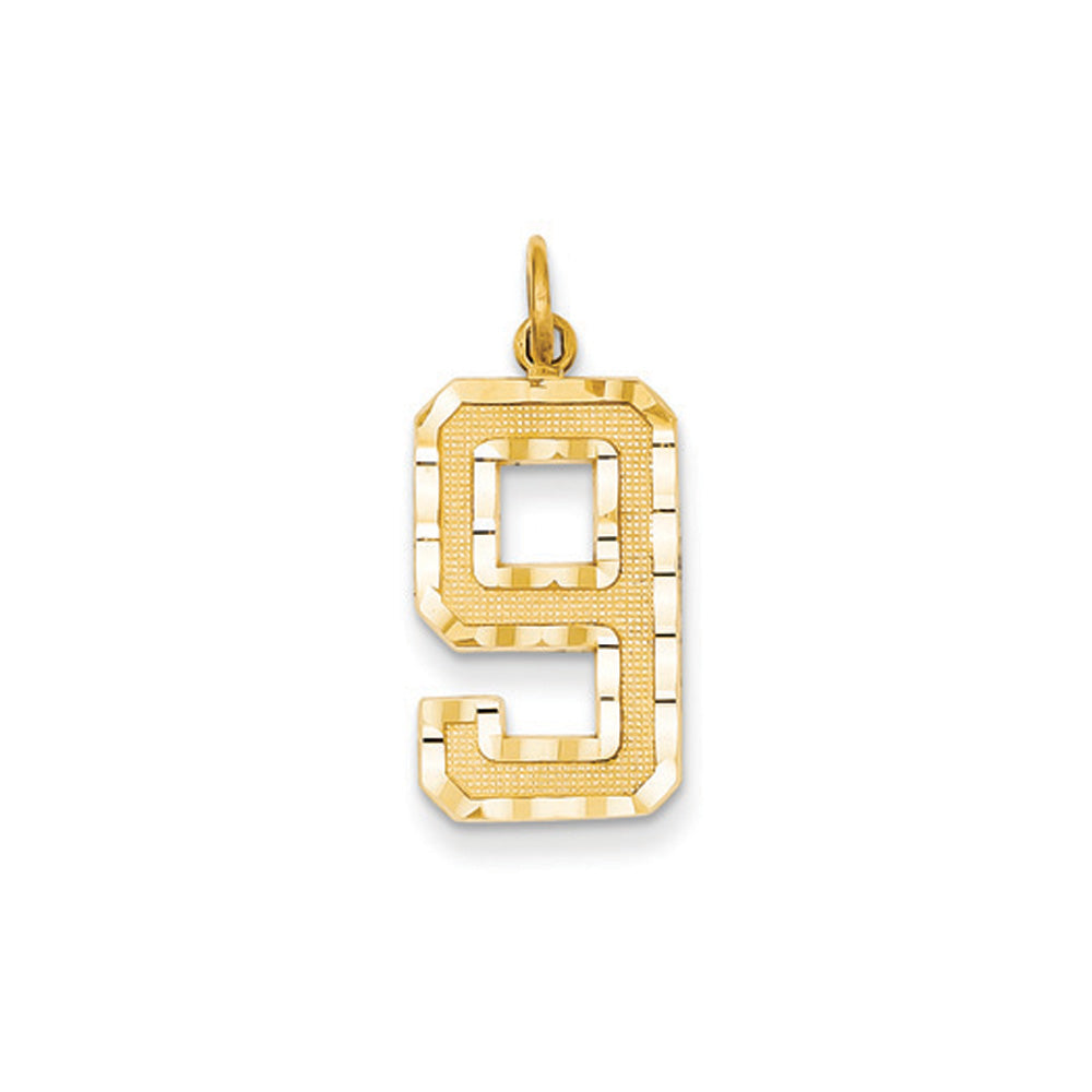 14k Yellow Gold, Varsity Collection, Large D/C Pendant Number 9, Item P10411-9 by The Black Bow Jewelry Co.