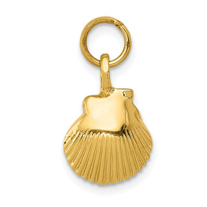 14k Yellow Gold Open Back Seashell Charm or Pendant, 10mm (3/8 Inch) - The Black Bow Jewelry Co.