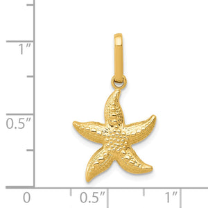 Alternate view of the 14k Yellow Gold 14mm Textured Hollow Starfish Pendant by The Black Bow Jewelry Co.