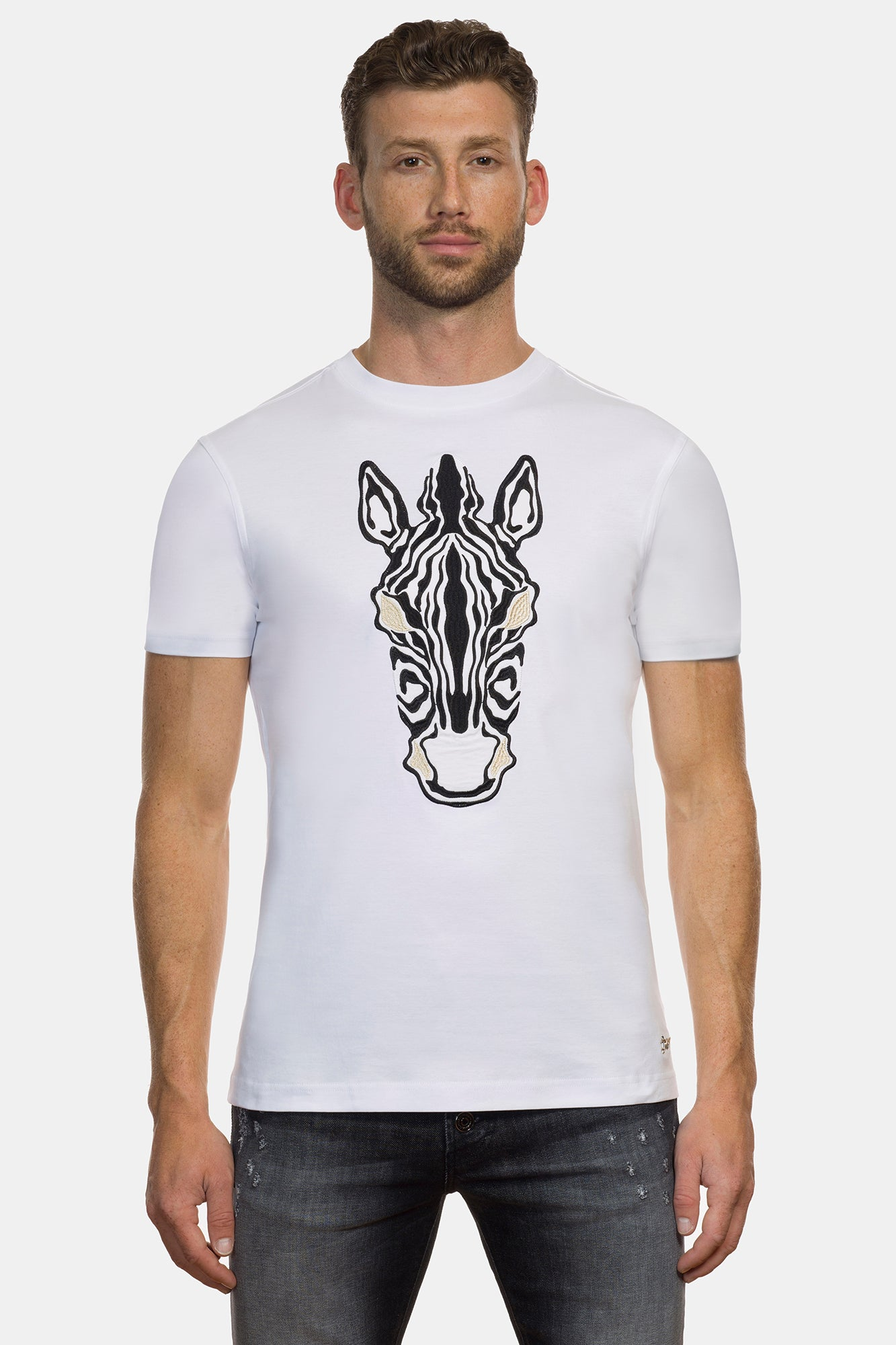 White Equus Burchelli Zebra - DIMORAL OFFICIAL