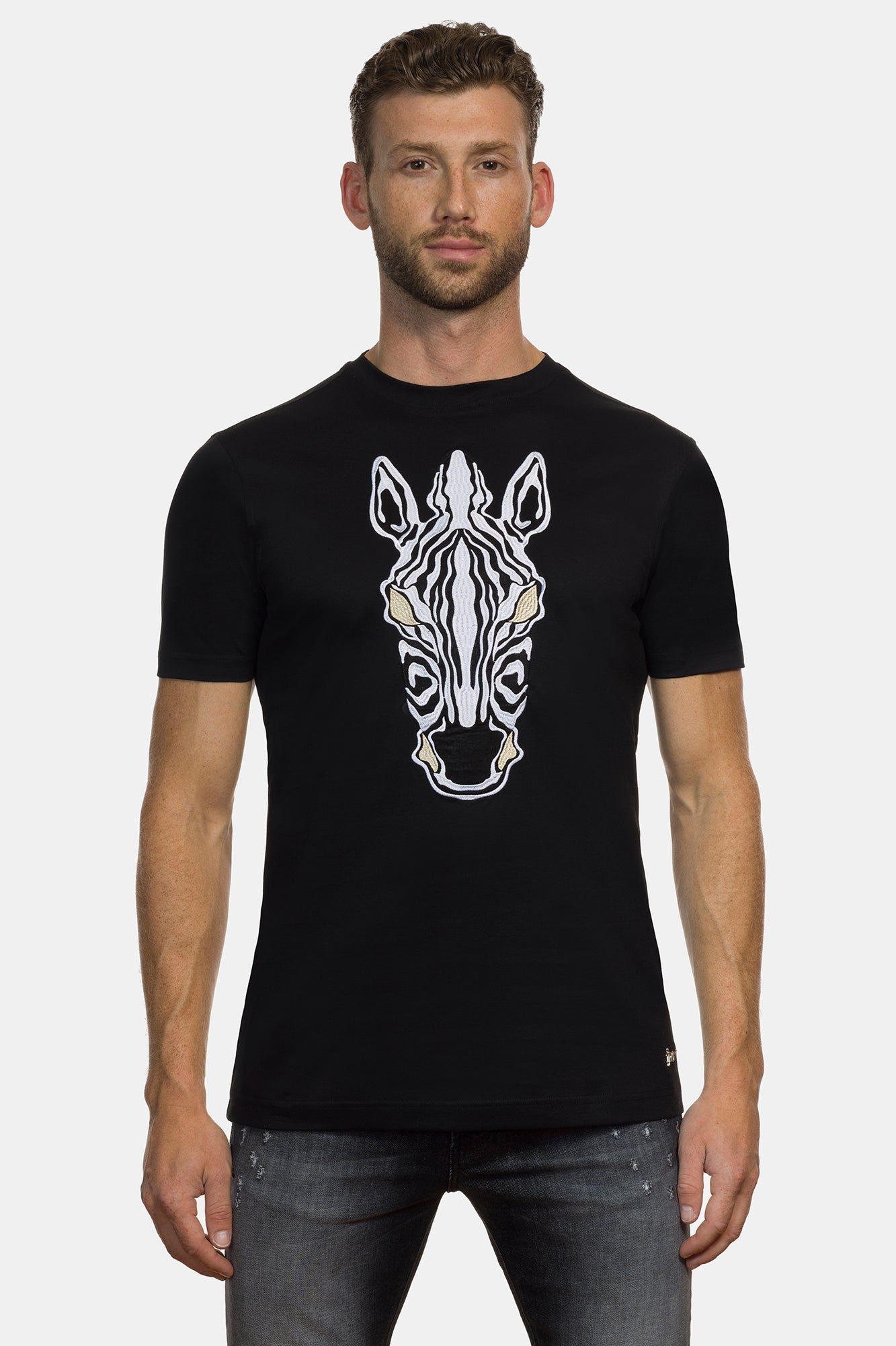 Black Equus Burchelli Zebra - DIMORAL OFFICIAL