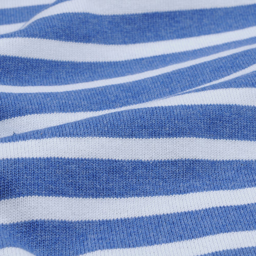 Stripe Long Sleeve Tee in Heather Blue & White