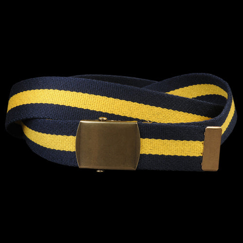 Striped Web Belt in Navy & Yellow