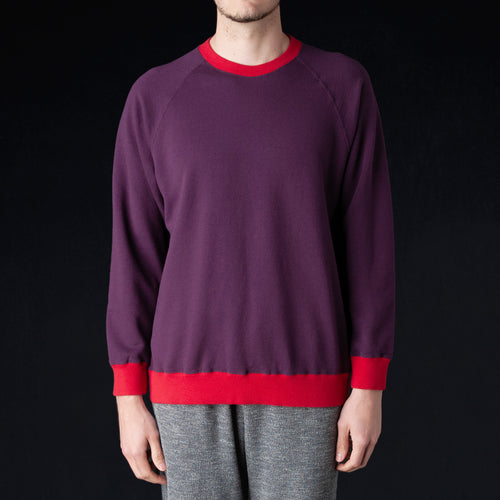 Terry Color Block Crewneck Sweatshirt in Purple & Red