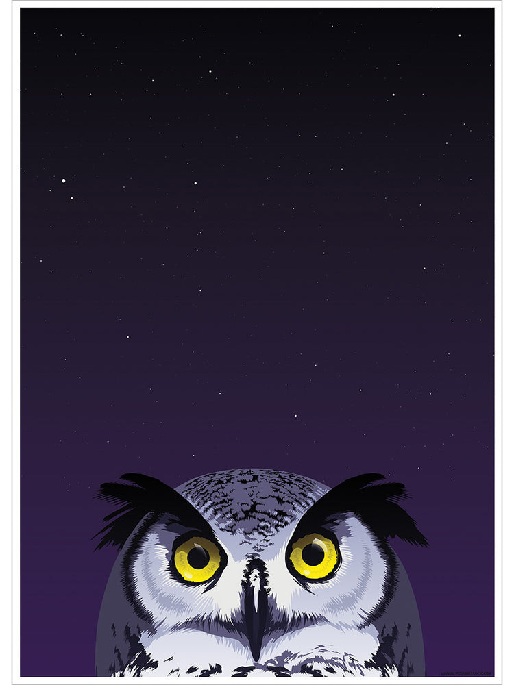Inquisitive Creatures Owl Mini Poster