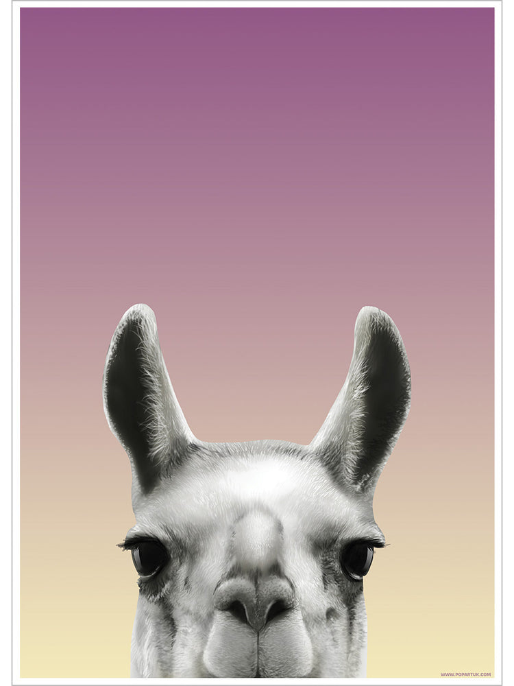 Inquisitive Creatures Llama Mini Poster