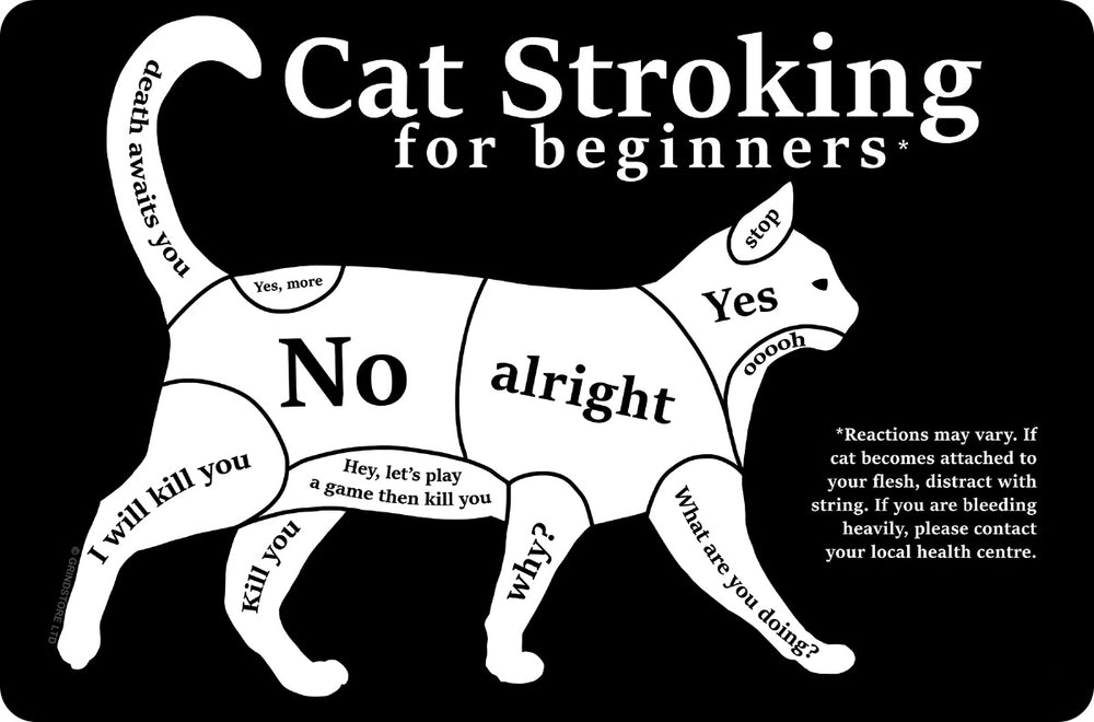 Cat Stroking For Beginners Small Tin Sign