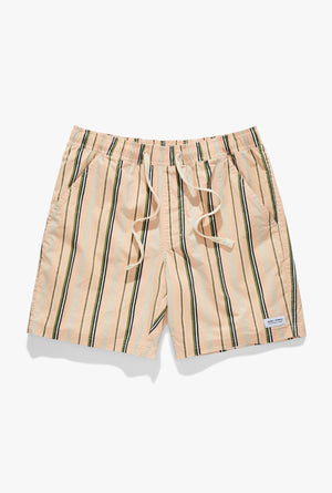 Capture Elastics Boardshort
