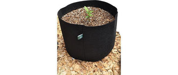 Grow Guru Horticulture's 10 Gallon Fabric Pot for Plants
