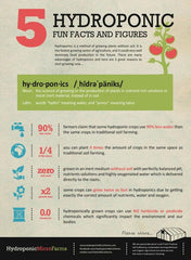 5 Facts and Figures about Hydroponics
