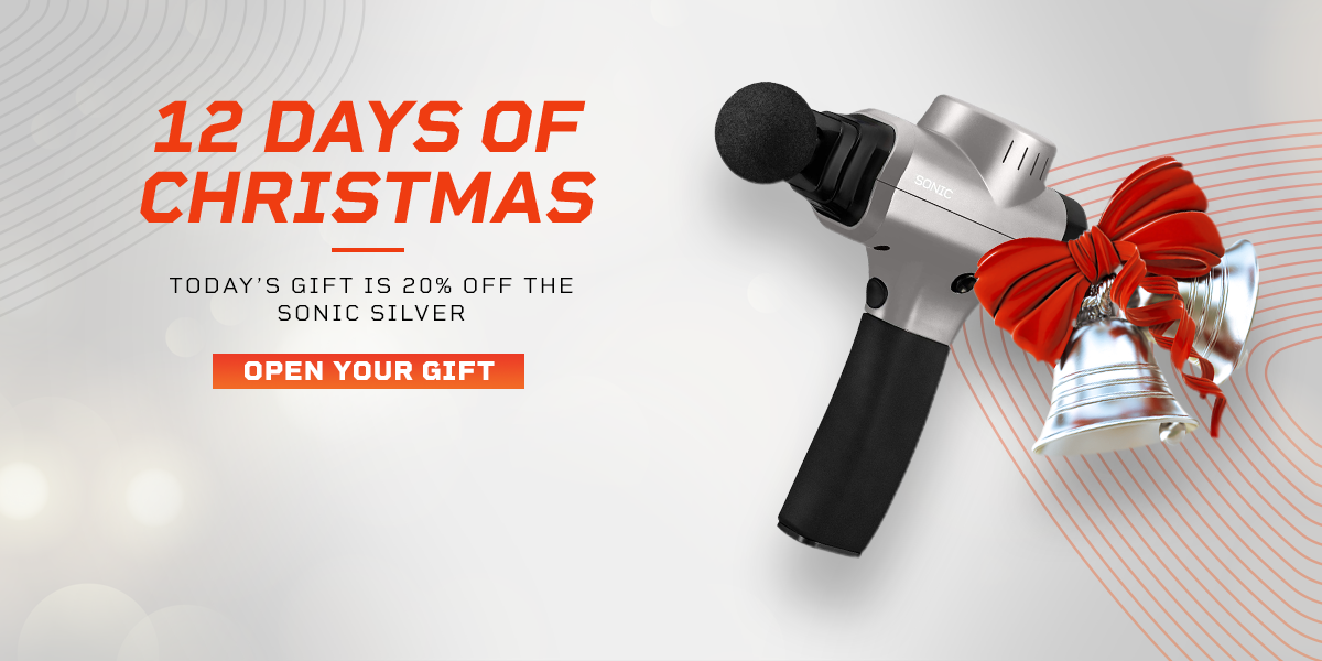 Sonic Silver Lifepro 12 Days of Christmas