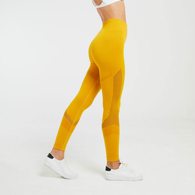 FGL - Crystal seamless leggings - Fit Girls Land