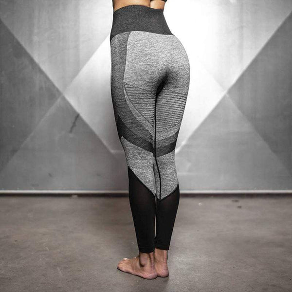 FGL - Pamela Seamless leggings - Fit Girls Land