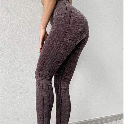 FGL - Elisha seamless leggings - Fit Girls Land