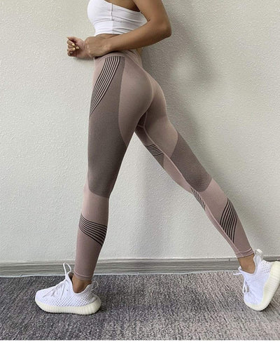 FGL - Fiona Seamless leggings - Fit Girls Land