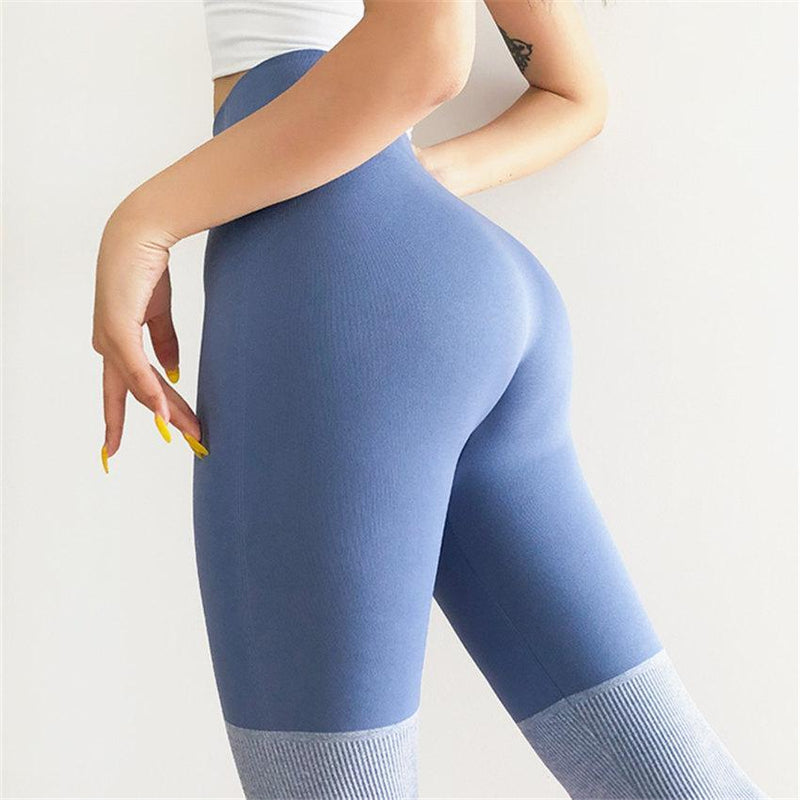 FGL - Jasenka Seamless leggings - Fit Girls Land