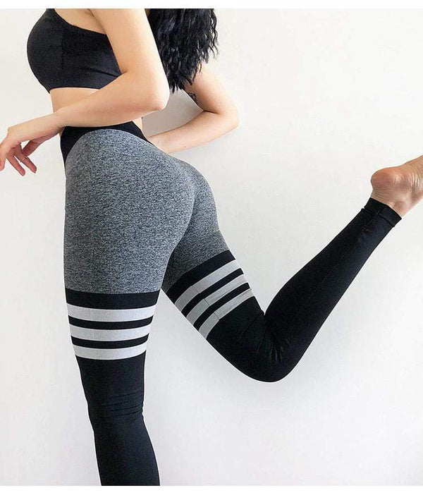 FGL - Siobhan Seamless leggings - Fit Girls Land