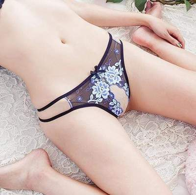 Fit Girls Land Sexy Embroidered Knickers