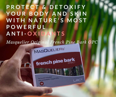 Masquelier French Pine Bark OPC