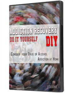 Addiction Recovery DIY: Plan B