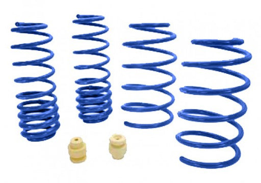 Roush Extreme Lowering Springs - Lebanon Ford Performance Parts