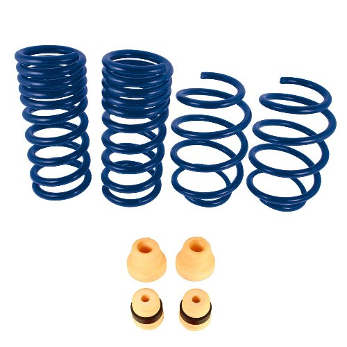 Ford Racing 2015-2018 Mustang GT350 Lowering Springs - Lebanon Ford Performance Parts