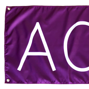 ACUiTY Instruments - ACUITY Paddock Banner - 1938