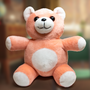 Fallout Bubblegum Bear Plush