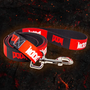 DOOM Dog Leash