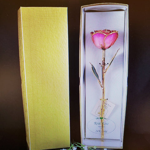 Gold Trimmed Rose in Pink Picasso - Treehouse Gift & Home